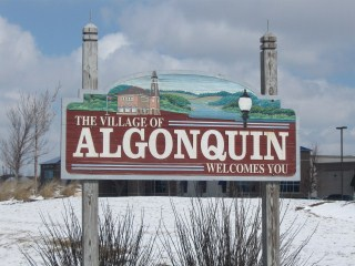 Need a pet sitter in Algonquin, IL?